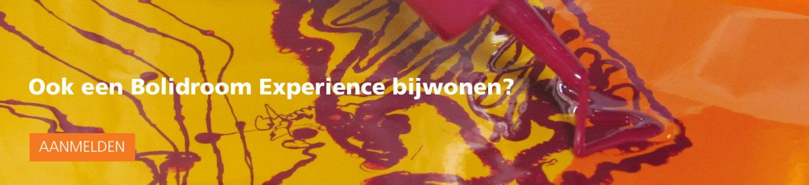 Banner Bolidroom experience NL