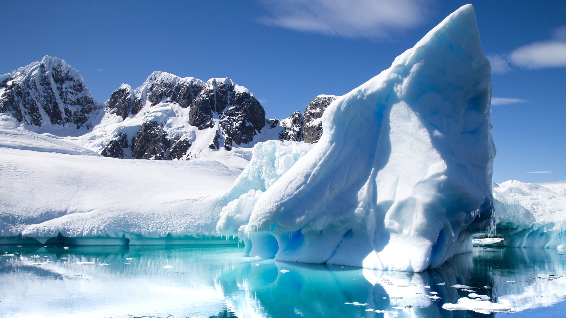 Header Antartica