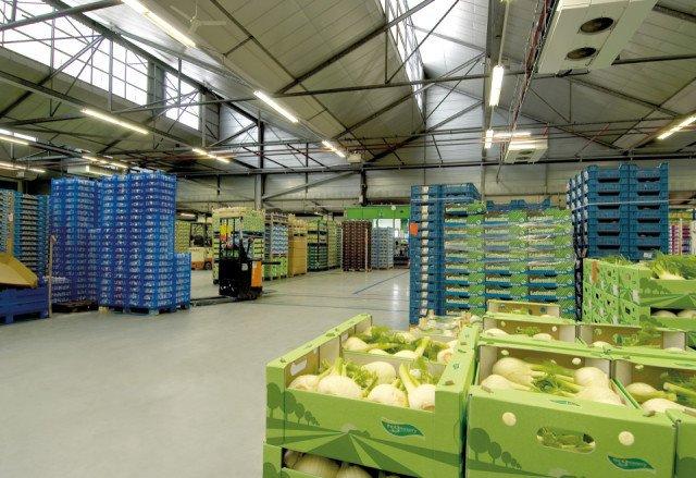 Greenery Bleiswijk Bolidtop 300